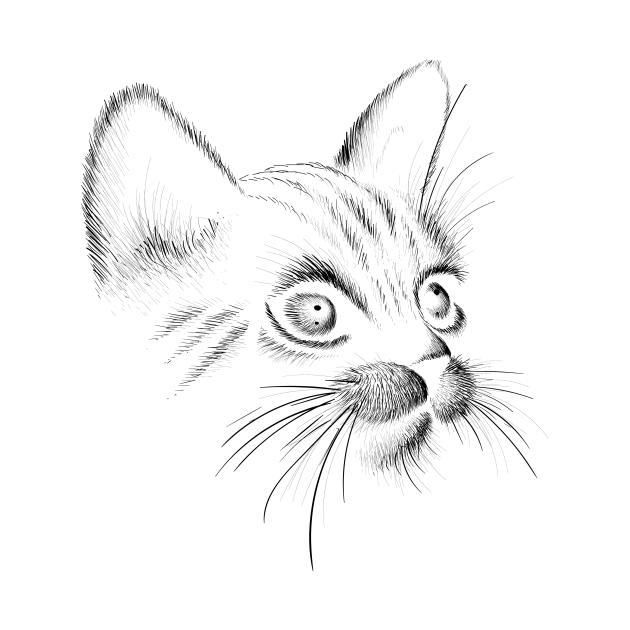TeePublic: cat hand drawn in black