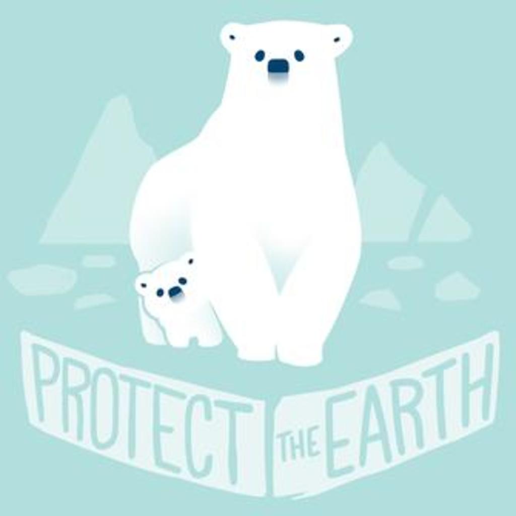 TeeTurtle: Protect The Earth