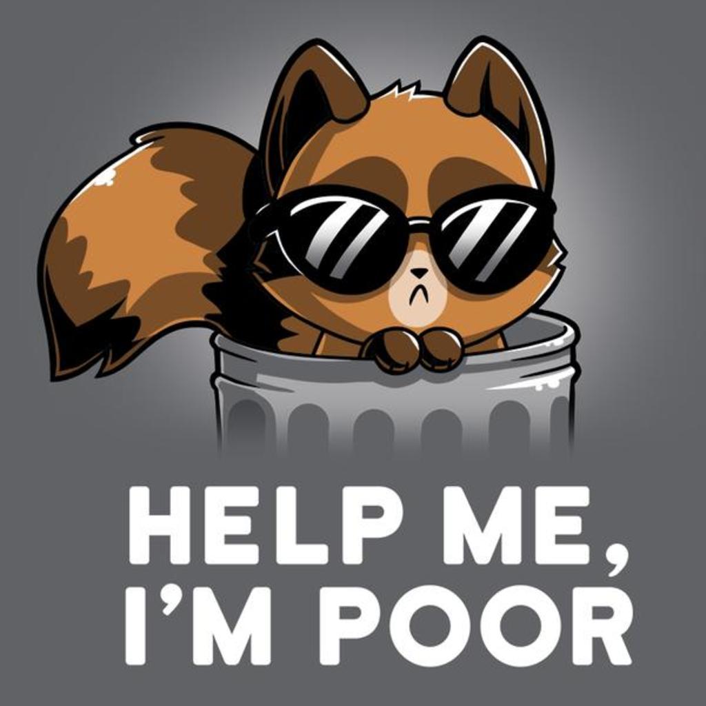 TeeTurtle: Help Me I'm Poor