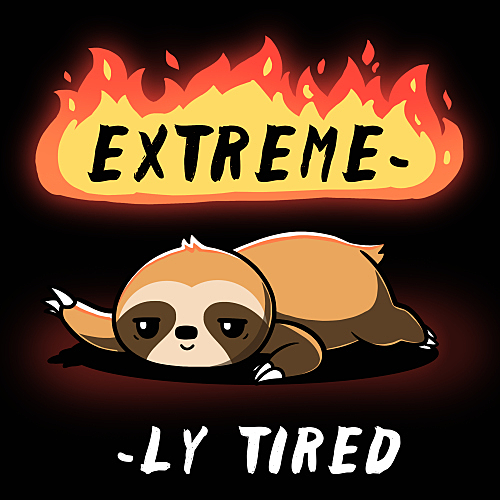 TeeTurtle: Extreme-ly Tired
