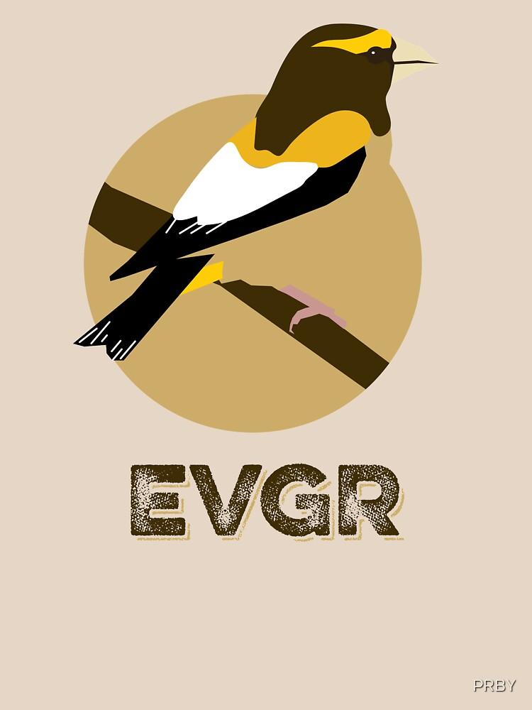 RedBubble: EVGR