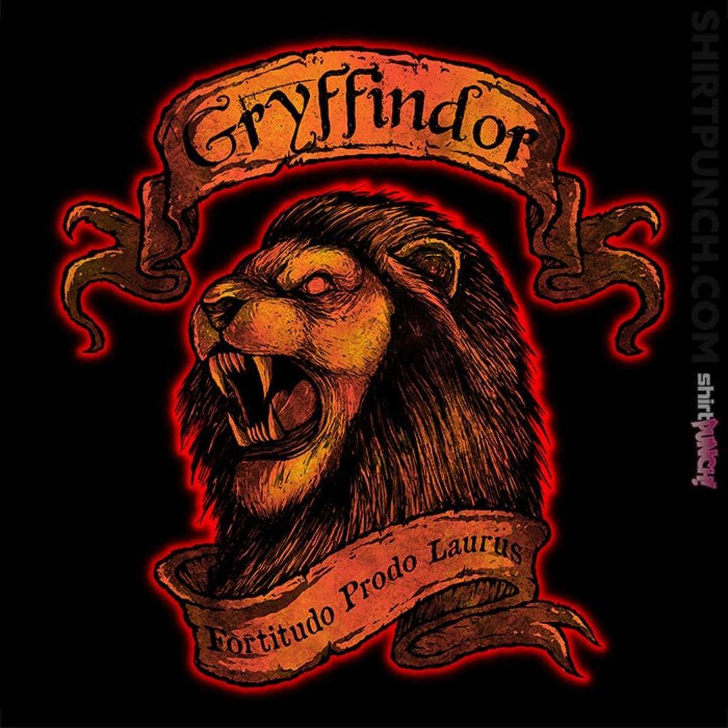 ShirtPunch: Gryffindor