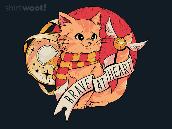 Woot!: Brave Cat