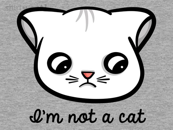 Woot!: Zoom Cat