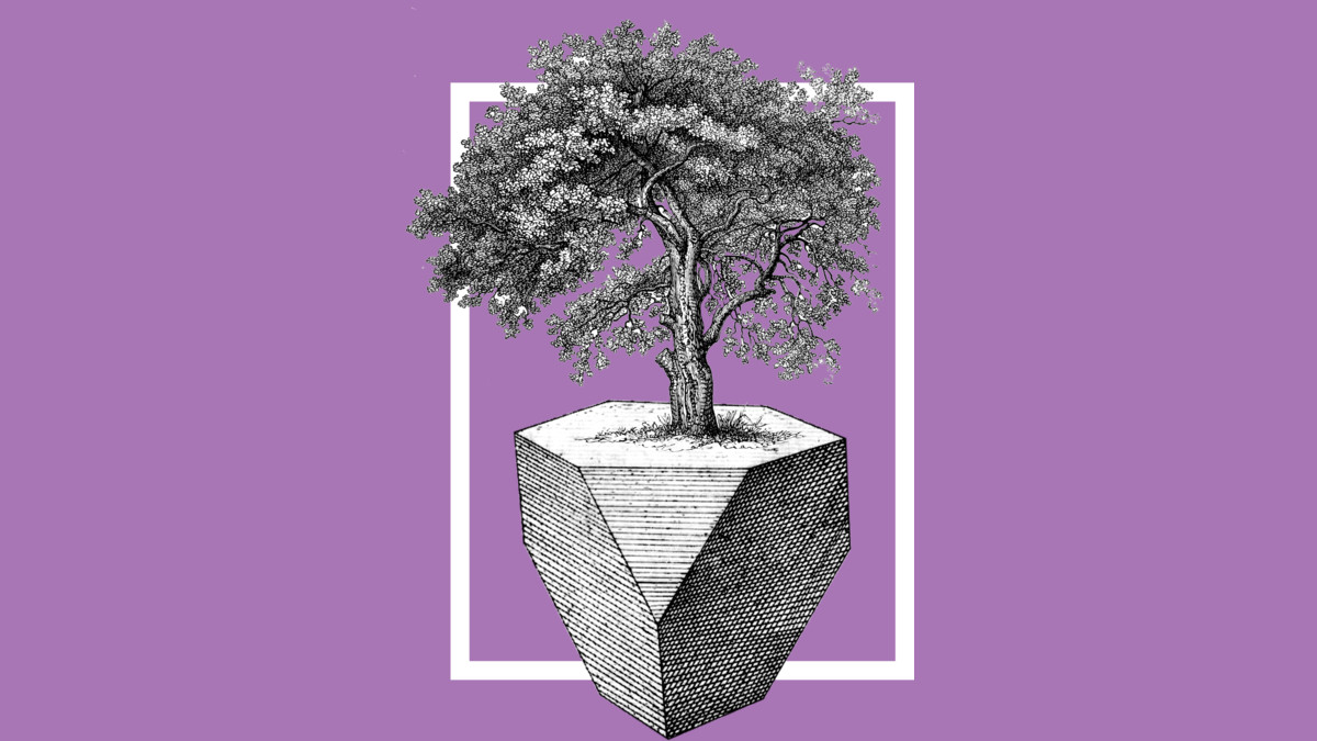 Design by Humans: Tree