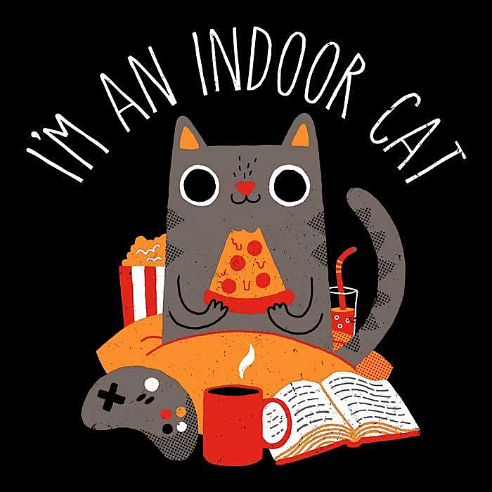 Once Upon a Tee: Indoor Cat