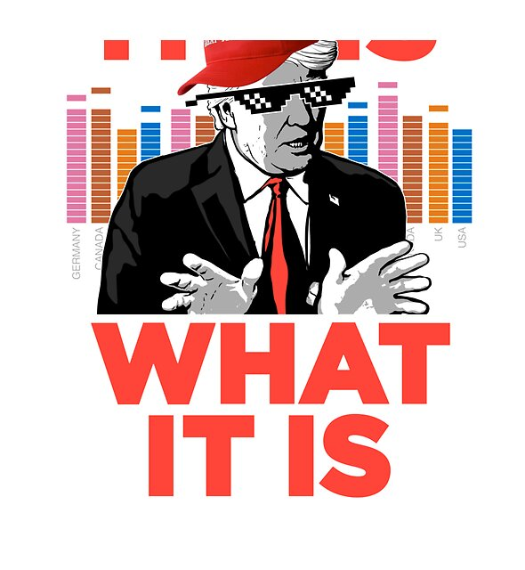 RedBubble: It Is What It Is Trump Rap WTFBrahh
