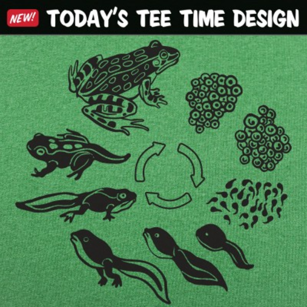 6 Dollar Shirts: Frog Life Cycle