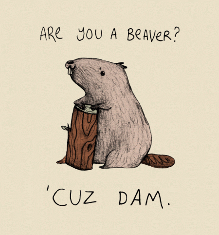 BustedTees: Dam
