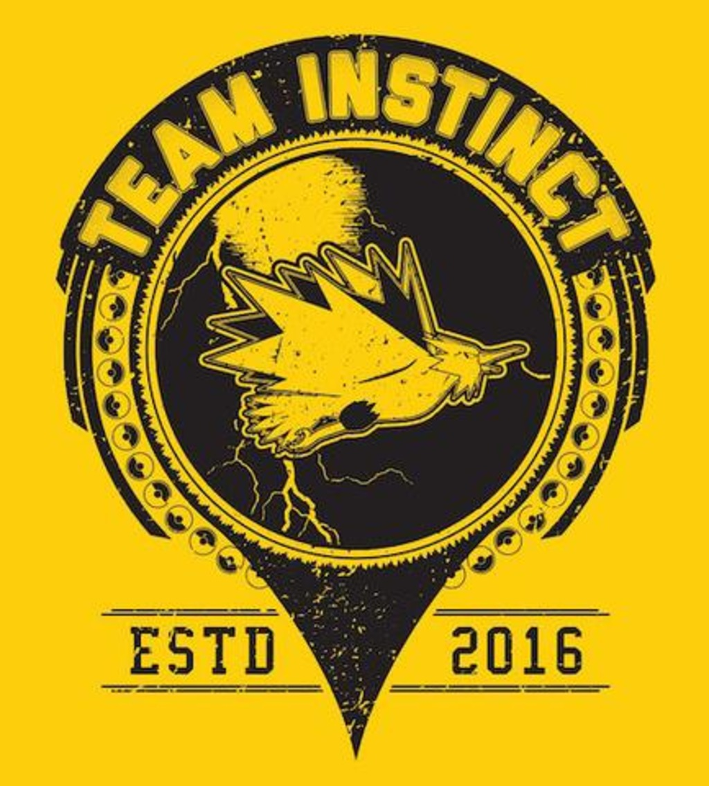 Shirt Battle: Team-Instinct