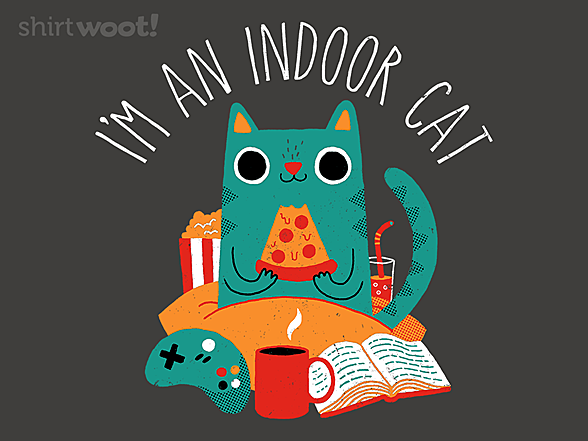 Woot!: Indoor Cat