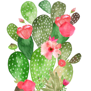 Design by Humans: Floral cacti