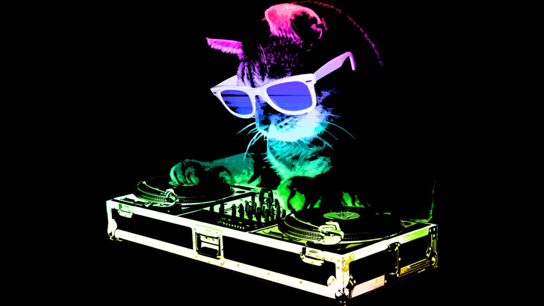 Design by Humans: HOUSE CAT (Rainbow DJ Kitty)