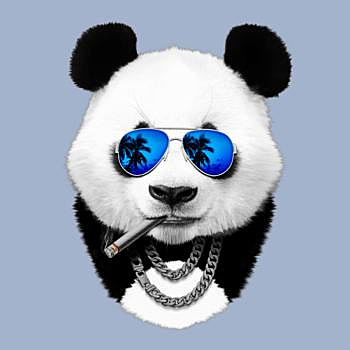 BustedTees: Cool panda