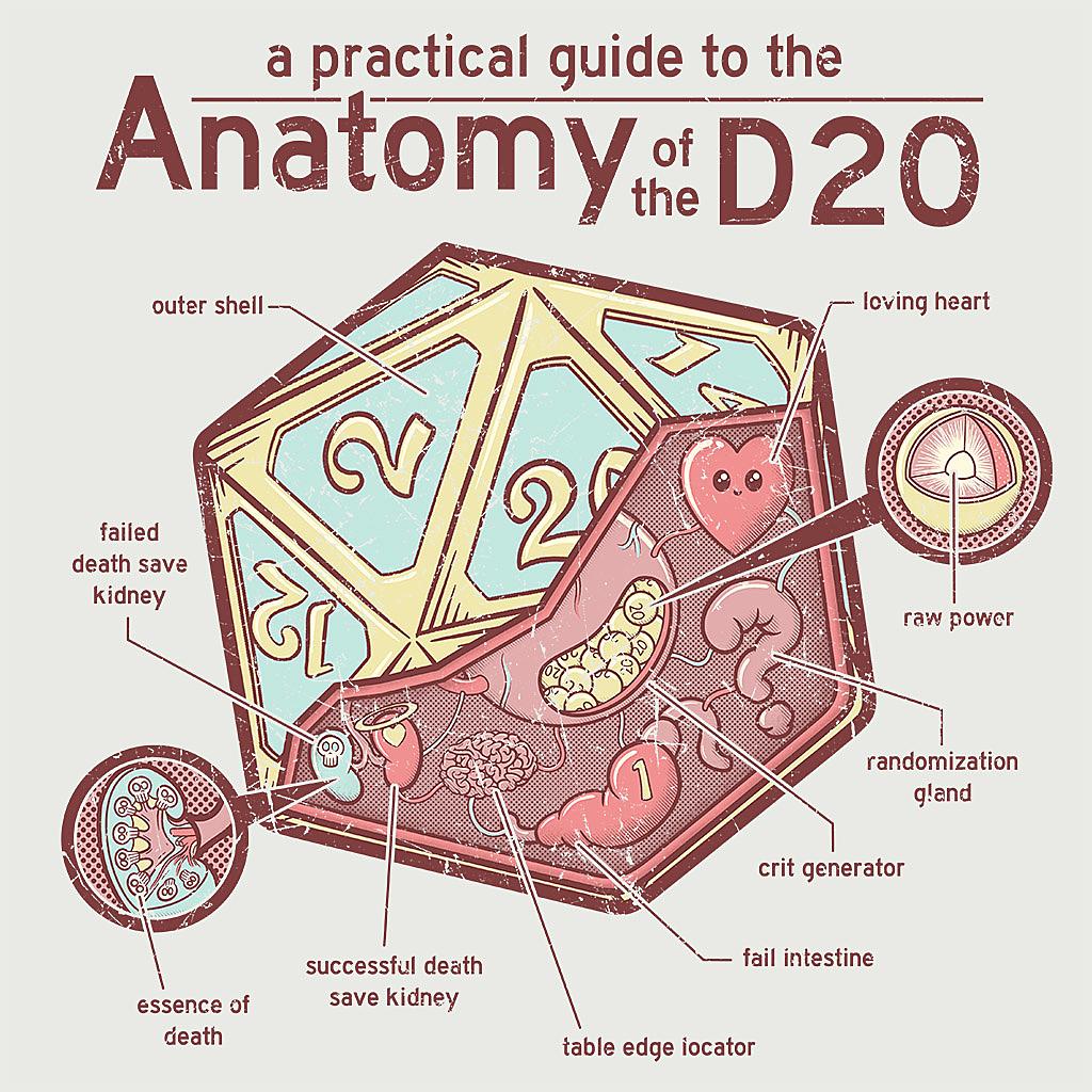 TeeTee: Anatomy of the D20