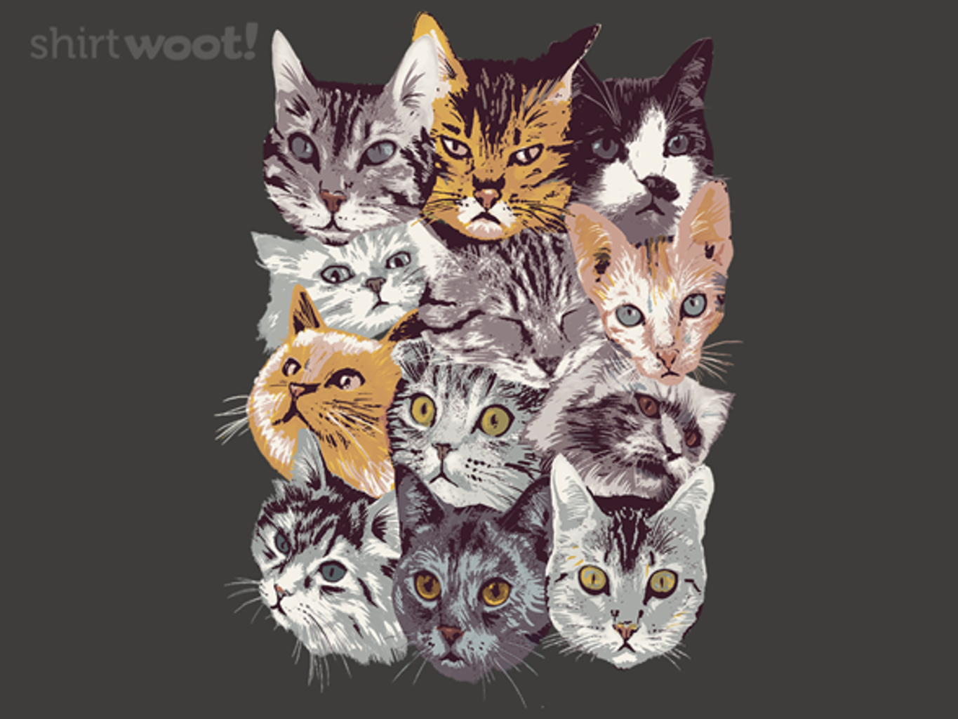 Woot!: Cat Collage - $15.00 + Free shipping
