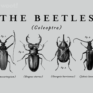 Woot!: Beetles Collection