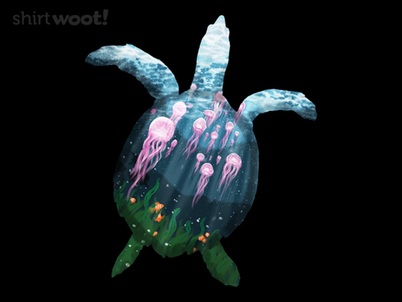 Woot!: Sea Turtle