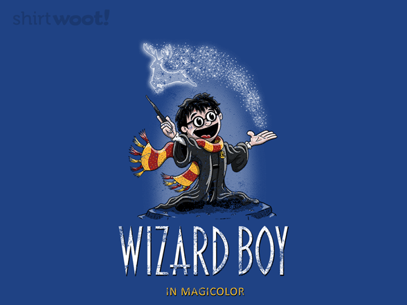 Woot!: Wizard Boy