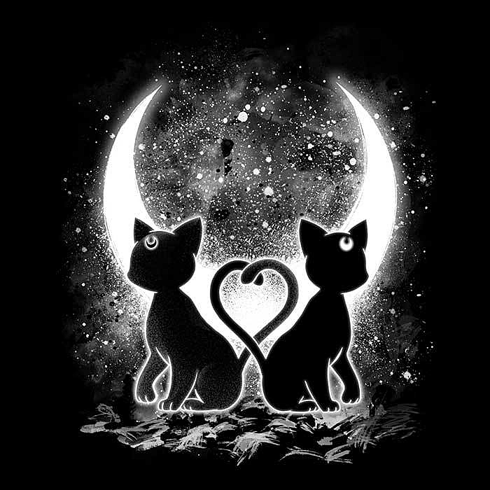 Once Upon a Tee: Moon Cats
