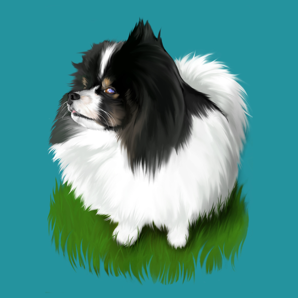NeatoShop: Mimmu the Fluffy Dog