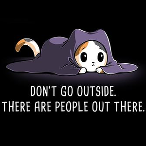 TeeTurtle: Don't Go Outside