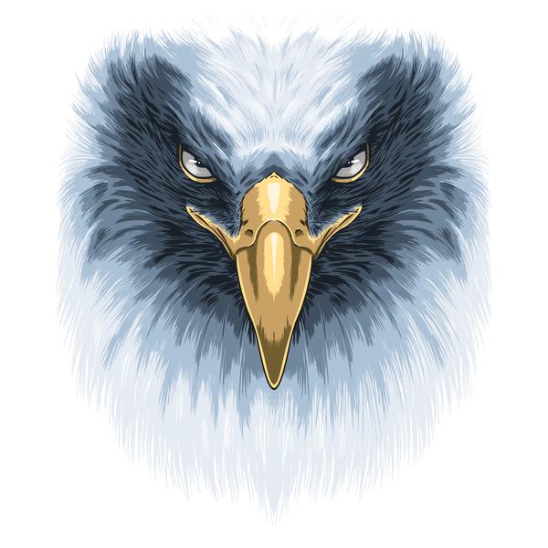 NeatoShop: Eagle Face