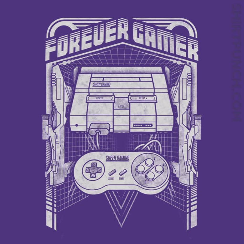 ShirtPunch: Forever Gamer