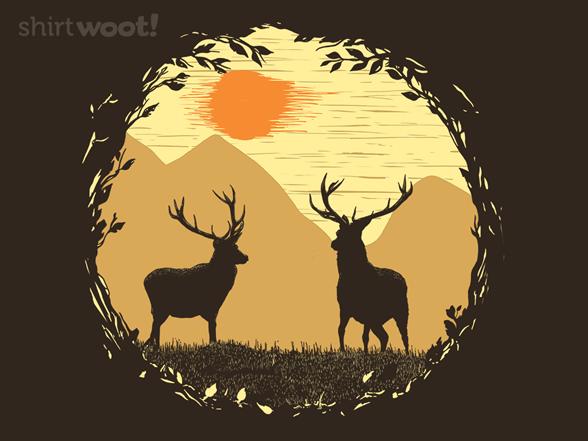 Woot!: Deer in the Meadow