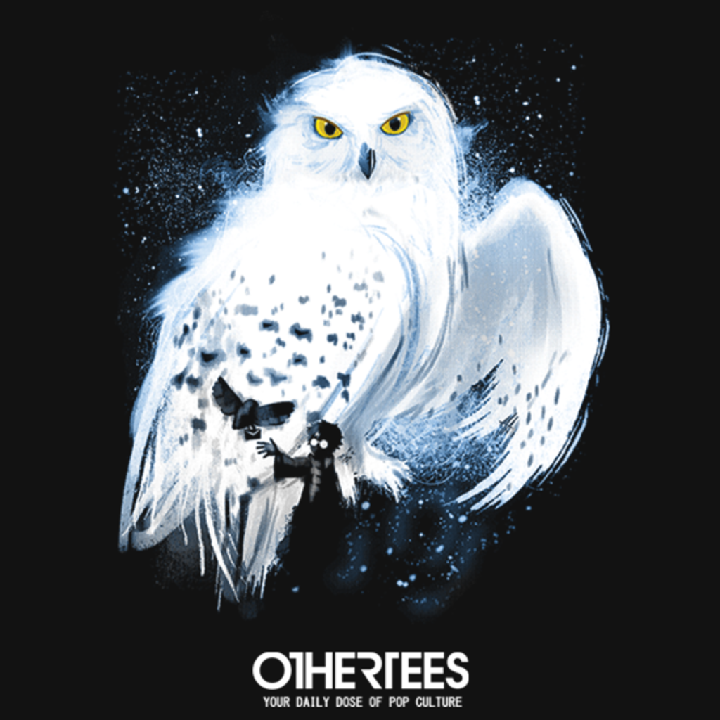 OtherTees: Mail by Owl