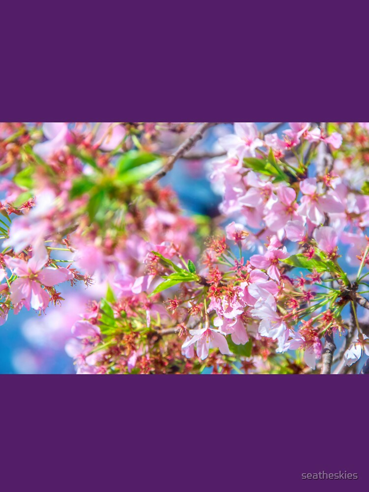 RedBubble: Cherry Blossoms Close-Up