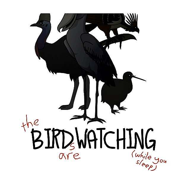 RedBubble: Birds are watching