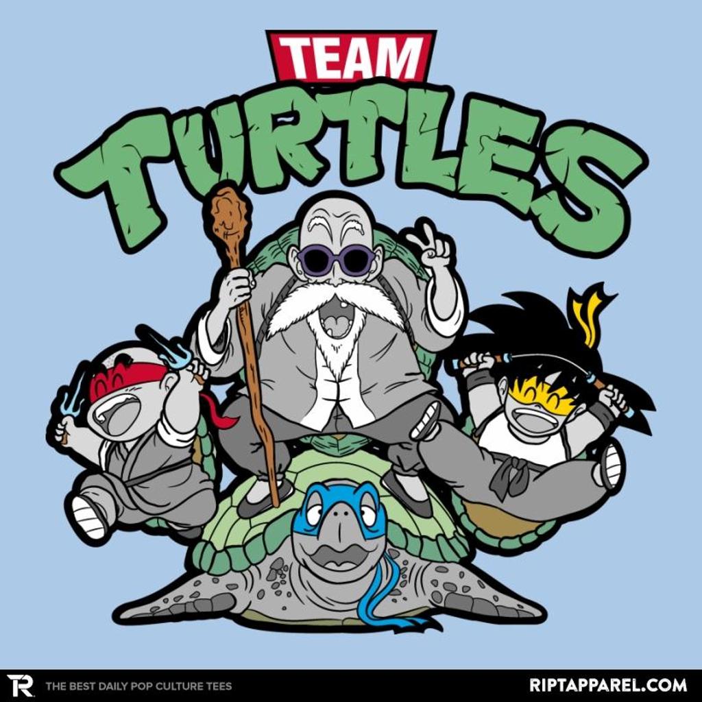 Ript: Team Turtles