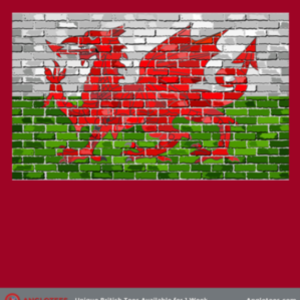 Anglotees: Wales Tribute