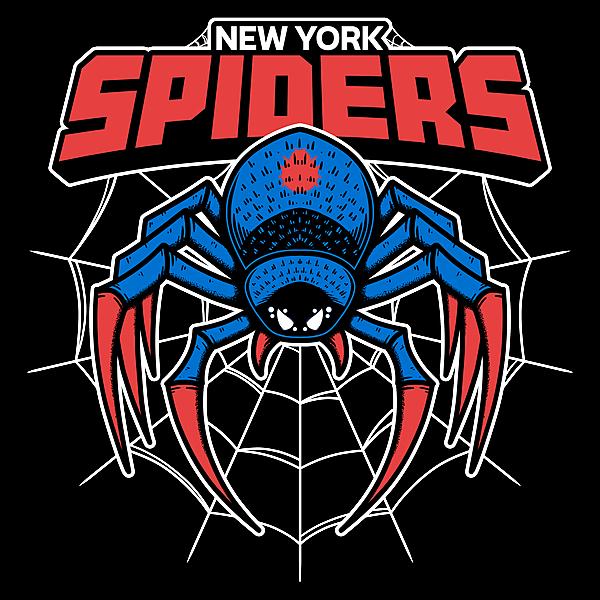 NeatoShop: NY Spiders