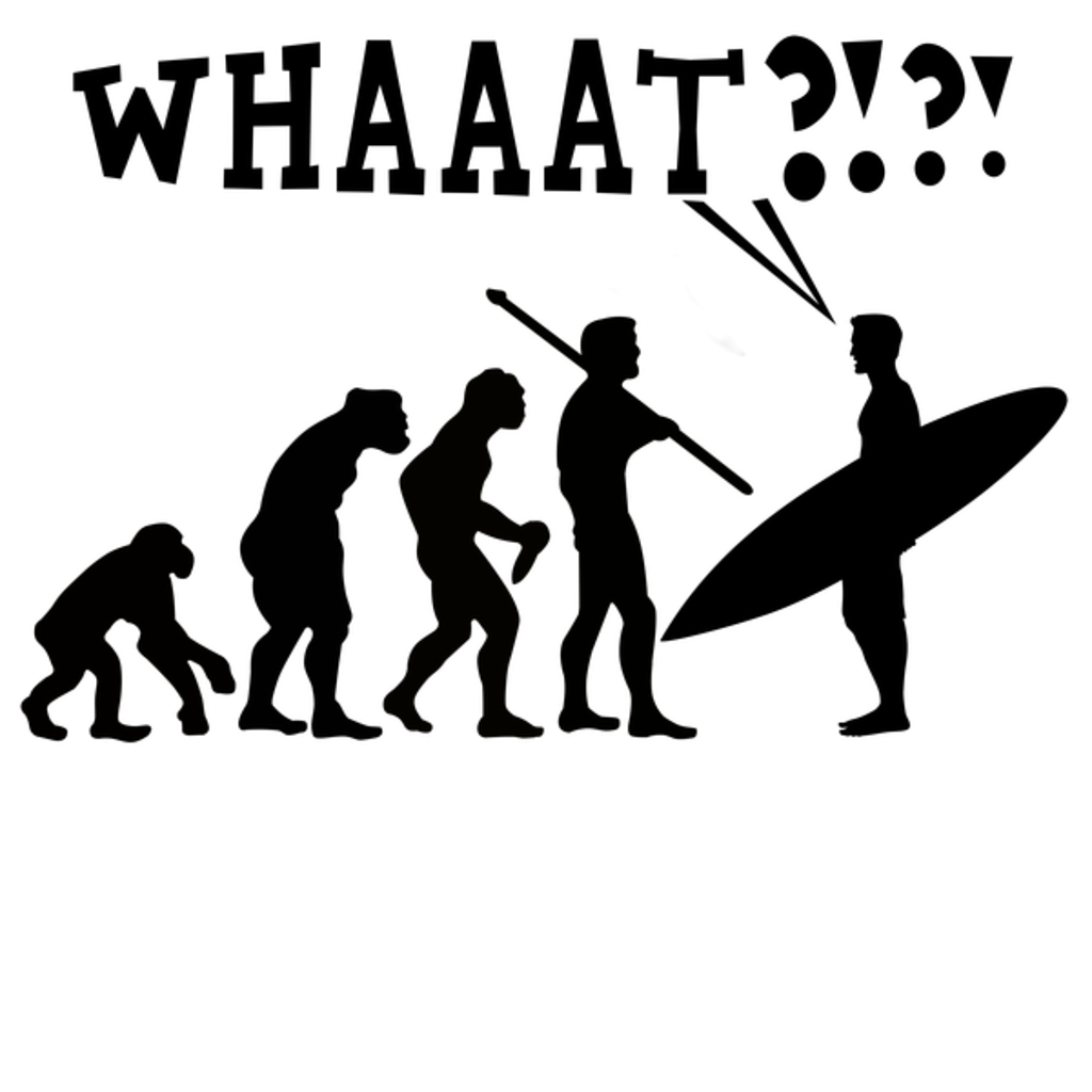 NeatoShop: Evolution Summer Of Surf