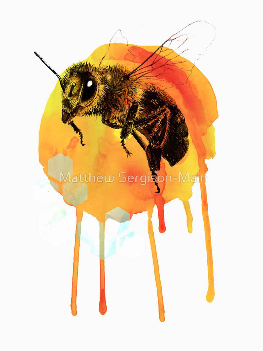 RedBubble: Honey bee watercolour