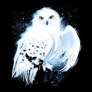 Once Upon a Tee: Mail By Owl