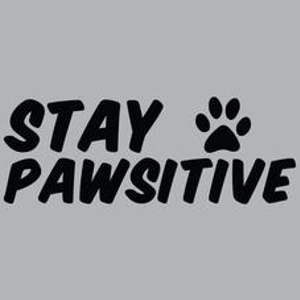 Textual Tees: Stay Pawsitive T-Shirt