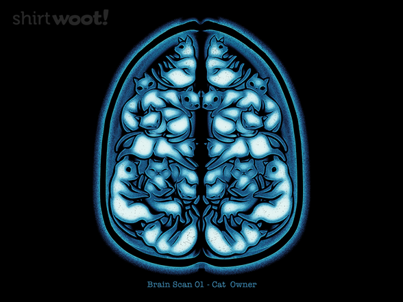 Woot!: Cat Scan