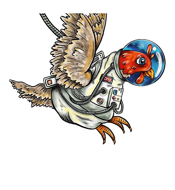 RedBubble: Space Chicken no background