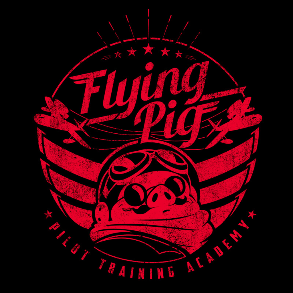 Pampling: Flying Pig