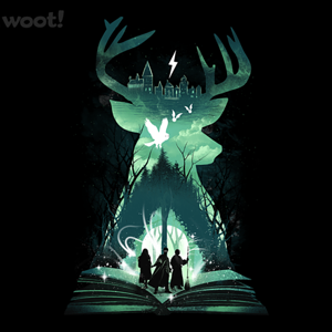 Woot!: The Magic Never Ends