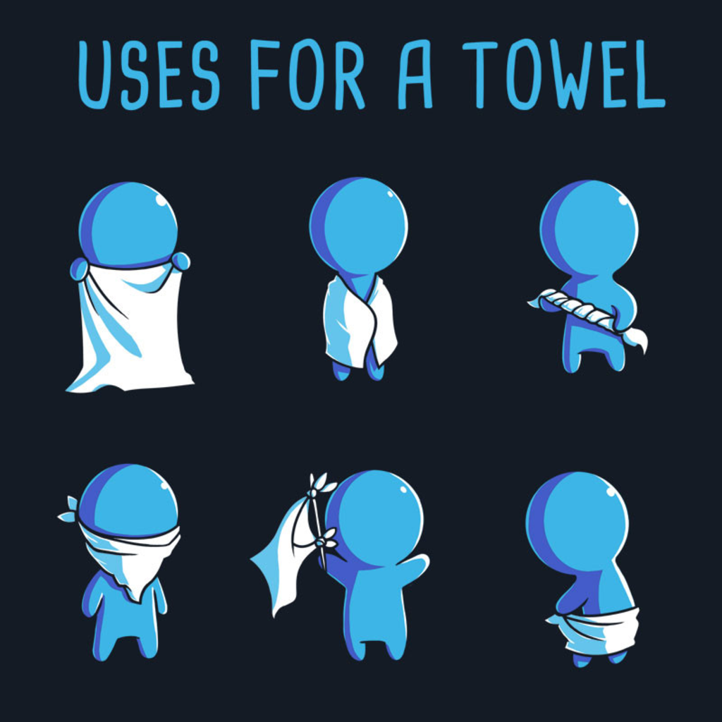 TeeTurtle: Uses for a Towel