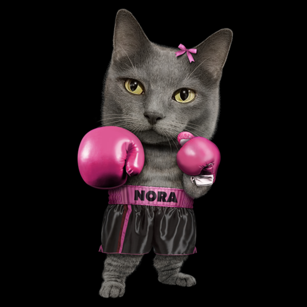 NeatoShop: NORA
