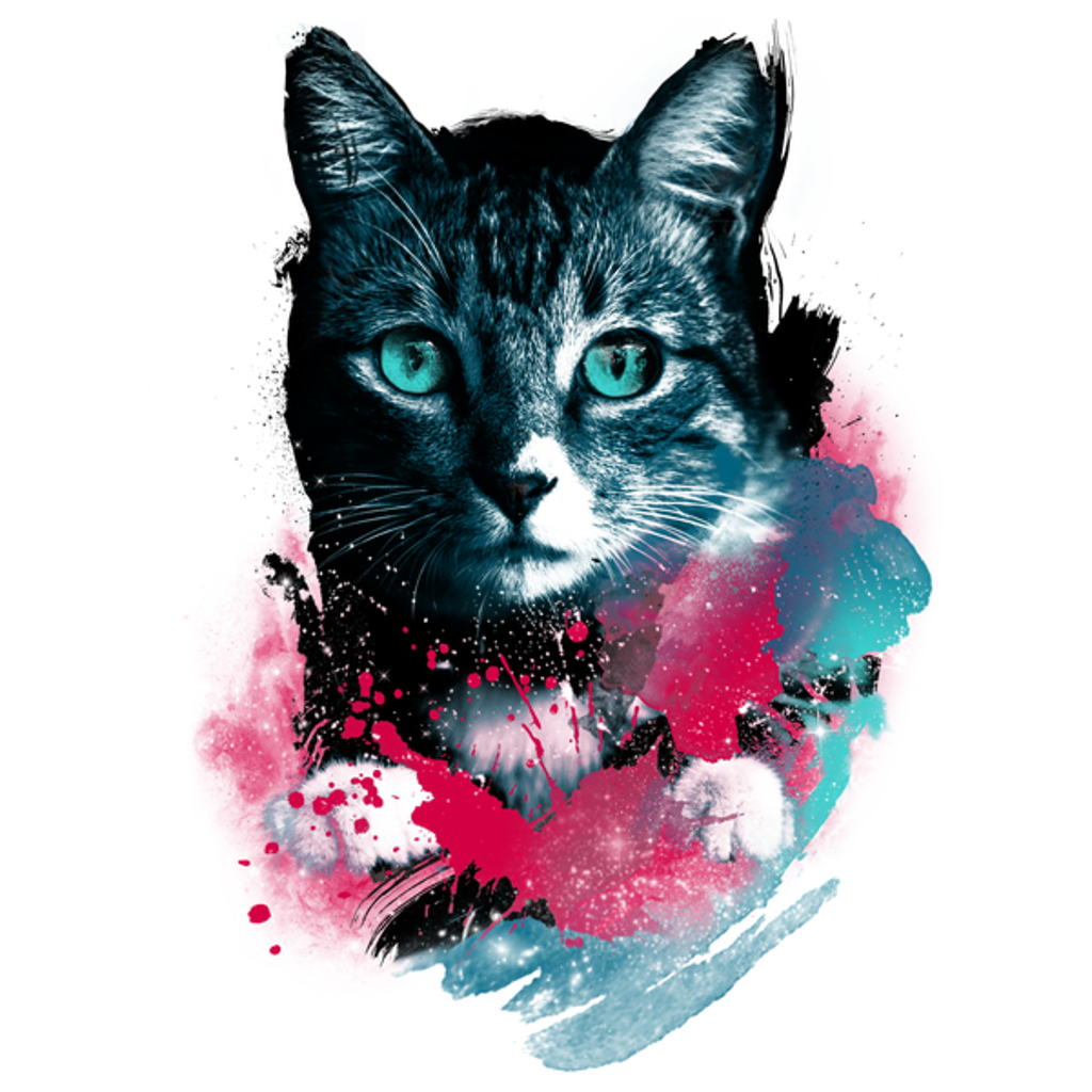 NeatoShop: Galaxy Cat