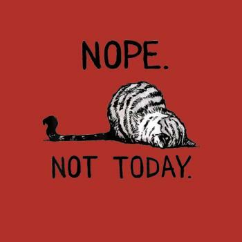 BustedTees: Nope not today cat