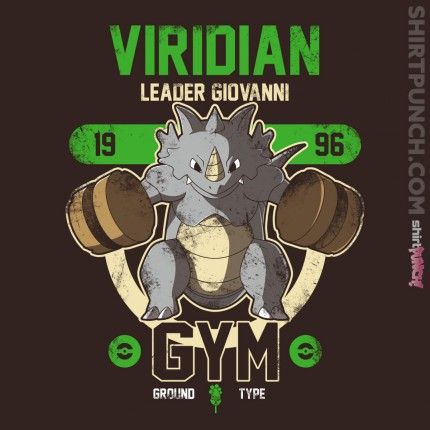 ShirtPunch: Viridian Gym