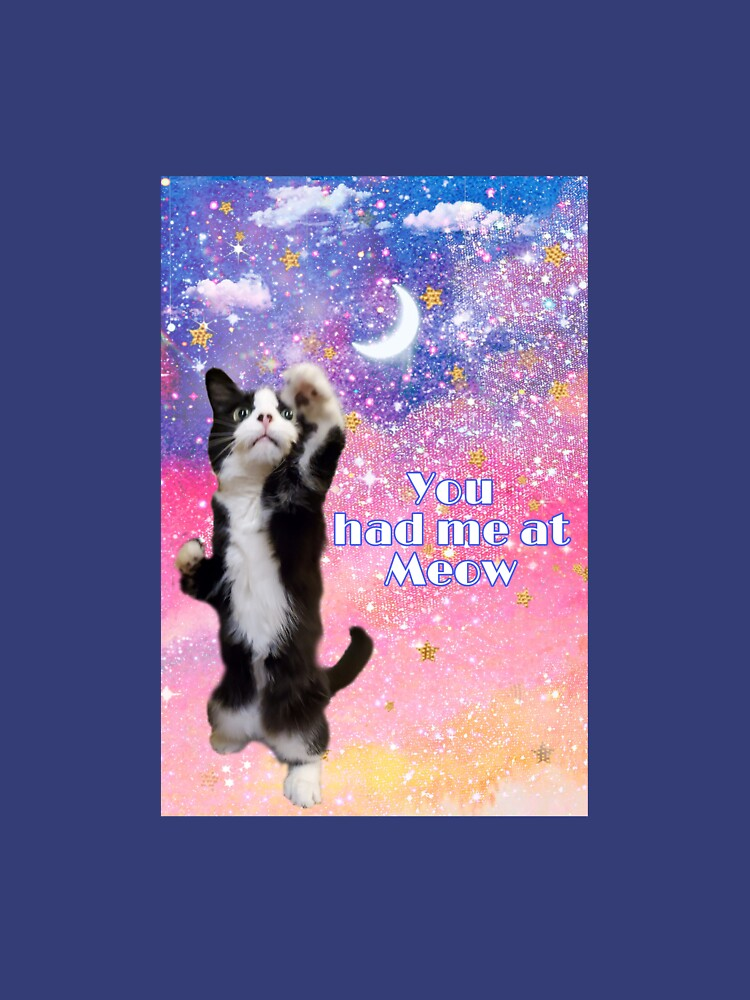 RedBubble: You had me at Meow