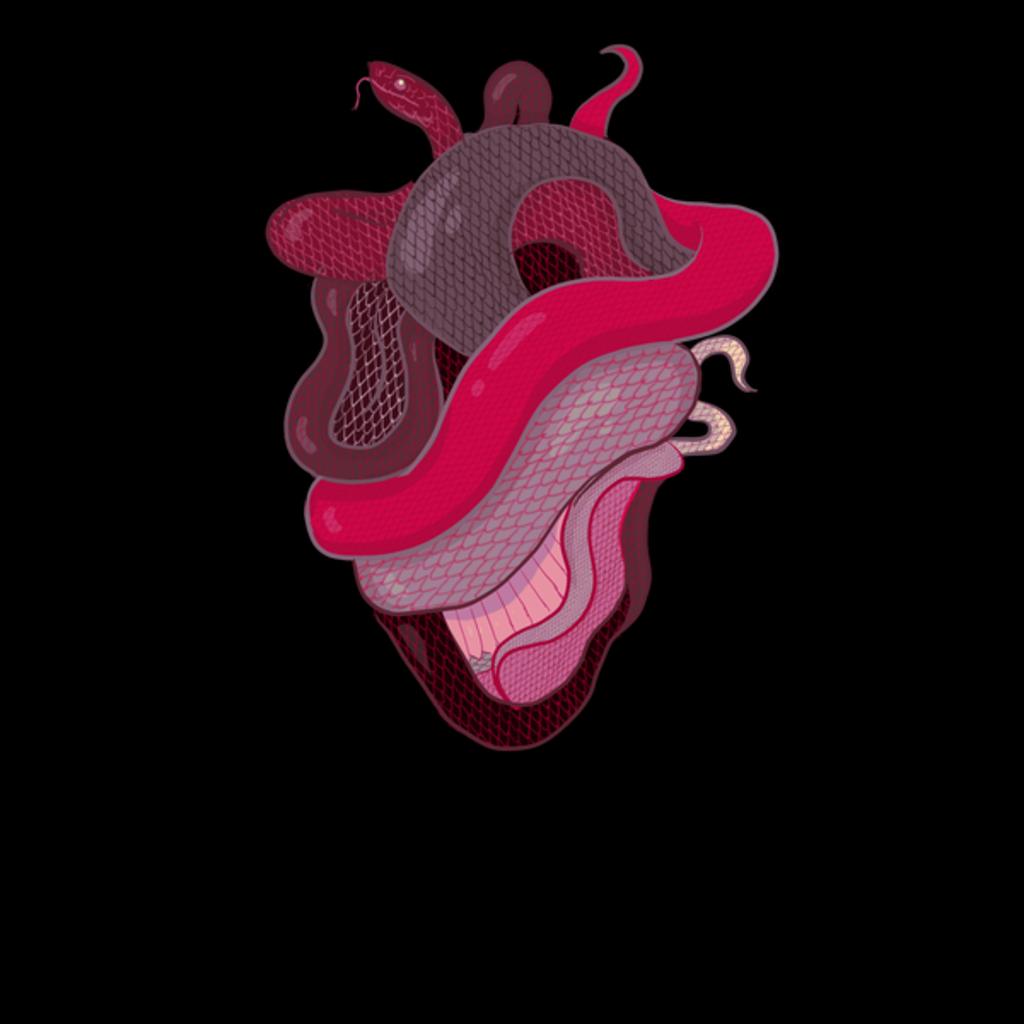 NeatoShop: Snake Heart